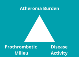 Atherosclerosis Triad of Factors-1