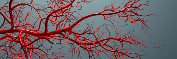 COVID-19 and Cardiovascular Disease - Image of blood vessels