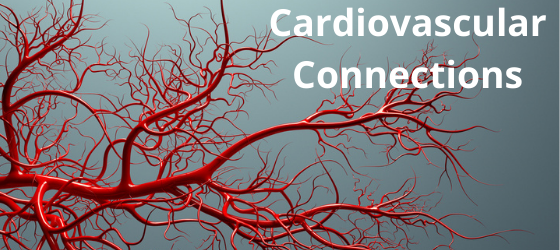 """Red arteries expanding across a gray space, with the words """"cardiovascular connection"""""""